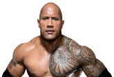 Superstar-Category_Superstar_562x408_theRock