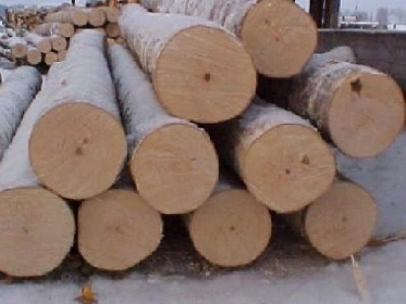 28-mc-de-lemn-confiscat-la-poienile-de-sub-munte
