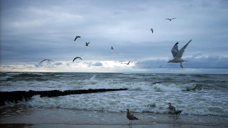 the_baltic_sea_by_cristallinum_d3dpb1m_95661700